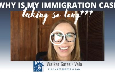Why is my immigration case taking so long?
